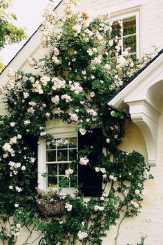 New Dawn roses only amplify the classic architecture of this historic brick home.  via This Is Glamorous.