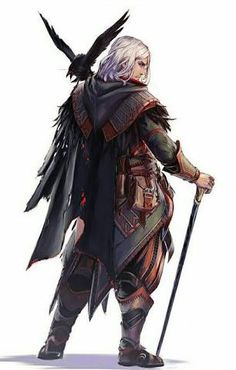 Image result for d&d characters