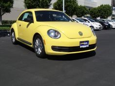 Used Volkswagen Beetle for Sale Beetle For Sale, Compare Cars, Beetle Car, Car Volkswagen, Slug, Vw Beetles, Future Car, Used Cars, Dream Cars