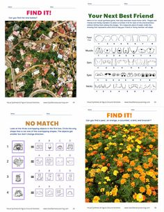 This 57 page download can help exercise visual processing!  Figure-ground is the ability to visually differentiate between an object and its background. Those that struggle with these two skills may have difficulty with visually dense tables or documents, as well as making sense of the gestalt from visually rich text. Come check out this fun publication. $  #figuregroundactivities #visualprocessing #visiontherapy Dysgraphia, Dyslexia, Teaching Activities, Teaching Strategies, Vision Therapy, Working Memory, Emotional Regulation, Executive Functioning, Educational Games