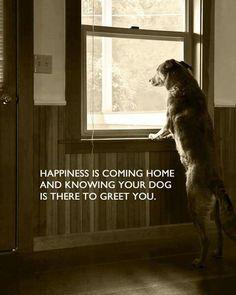 So true...!!