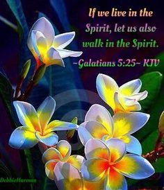 ~Galatians 5:25~ KJV. If we live in the Spirit, let us also walk in the Spirit.