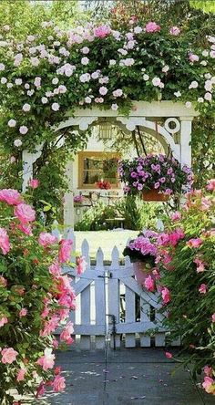 I want this so much in my garden ♡♡♡