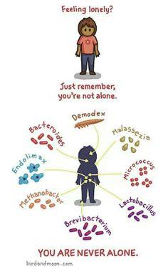 Jajajjaa no toy sola...toy full de microorganismos! !! xD