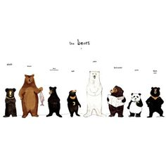 The Bear Family print, A3 size with beautiful bear illustrations by Katie Viggers
