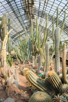 JOELIX.com | Jardin des Serres d'Auteuil in Paris. Many good photos on this site.