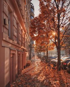 travel tip train citybestviews: quot; Photo by: georgrehm . Berlin is the of Germany and one of the 16 states of Germany. Berlin has the largest train station in Europe. Tag your city pics and us citybestviews City Aesthetic, Travel Aesthetic, Aesthetic Vintage, Photo Pour Instagram, Autumn Scenery, Autumn Cozy, Fall Wallpaper, Autumn Photography, Autumn Aesthetic Photography