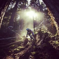 Whistler, biking, mountain biking, adventure, travel, HyperActiveX