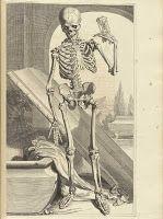 The Sum Of All Crafts: Dem Bones, Dem Bones...