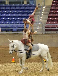 Technique Equestrian Vaulting Club 2014 Trot Team National Champs