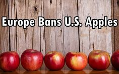 Apples treated with diphenylamine, a substance which keeps them from turning brown for months, are being rejected globally due to toxicity.