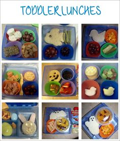 Picky toddler? try making lunch time fun with bento lunches!
