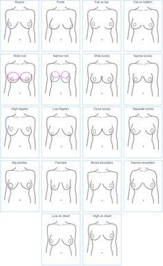 Boob Chart : chart, Intimates, Ideas, Fitting,, Charts,