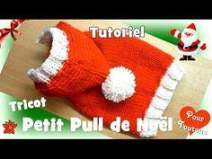Tutoriel Tricot: Petit Pull de Noël pour petits chiens - YouTube