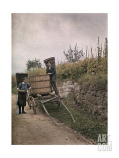 Two Men Collect Grapes in Alsace, France, 1924 Giclee Print by Jules Gervais-Courtellemont at Art.com