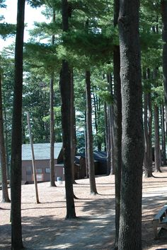 16 Best Welcome to Camp Wildwood! images in 2015 | Camping in maine