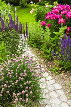 Beautiful garden path and landscaping ideas. Perennials spilling over this path, peonies, roses and salvias, all great perennials.