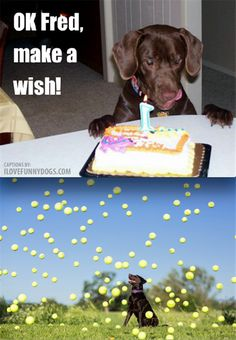 Funny Pictures Of The Day � 93 Pics