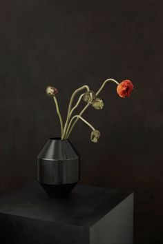 Referencing classic ceramic vases and ancient Greek vessels, the Hydro Vase makes a modern statement that incorporates the material properties and appeal of brass. Chosen because it can be shaped in ways that resemble iconic pottery, brass exudes even more character with a patina that will gradually emerge over time.  #fredericiafurniture #complements #hydrovase #hydro #sofieøsterby #modernoriginals #craftedtolast #interiordesign #danishdesign #scandinaviandesign Material Properties, Danish Design, Ancient Greek, Scandinavian Design, Vases, Pottery, Classic, Modern, Character
