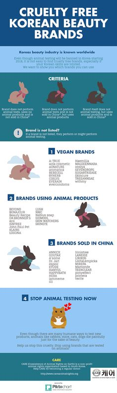 Cruelty Free Korean Beauty Brands | Coexistence of Animal Rights on Earth