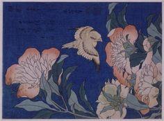 """CanaryandPeony""   Artist: Katsushika Hokusai  Completion Date: 1834  Style: Ukiyo-e  Genre: bird-and-flower painting  Gallery: Guimet Museum, Paris, France"