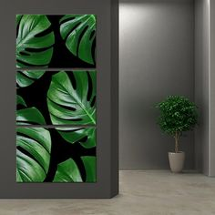 Leaf Deco Multi Panel Canvas Wall Art by ElephantStock is printed using High-Quality materials for an elegant finish. We are the specialists in Modern Décor canvas prints and we offer 30 day Money Back Guarantee Cactus Wall Art, Tree Wall Art, Diy Wall Art, Wall Art Decor, 3 Piece Wall Art, Canvas Wall Collage, Canvas Art, Diy Canvas, Photo Canvas