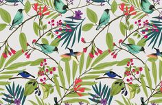 Illustrated Birds and Berries Mural, made to suit your wall size by the UK's for wall murals. Custom design service and express delivery available. Botanical Wallpaper, Bird Wallpaper, Tropical Birds, Exotic Birds, Mural Art, Wall Murals, Coloured Feathers, Red Berries, Colorful Interiors