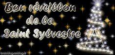 http://toutoblog.unblog.fr/2014/12/31/bon-reveillon-de-la-saint-sylvestre/Bon réveillon de la Saint Sylvestre