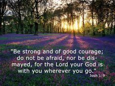 Be strong and of goo     Be strong and of good courage;  https://www.pinterest.com/pin/445082375650215941/   Also check out: http://kombuchaguru.com