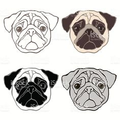 Vector set of  pug's face.  Sketch, four variants. royalty-free stock vector art