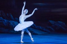 Alina Cojocaru as Odette/Odile in English National Ballet's production of Swan Lake. Photo: © Photography by ASH | Flickr - Photo Sharing!