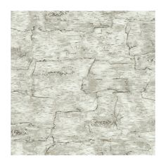 York Wallcoverings LM7987 Lake Forest Lodge Birch Bark Wallpaper, Off White - - Amazon.com