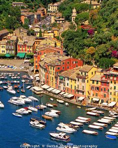 Beautiful Portofino Village | #Information #Informative #Photography
