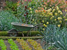 Kitchen garden at Forde Abbey