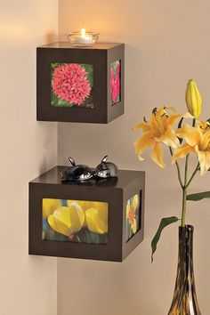 Functional Wall Decor by Nexxt  Quadrant Cubic Shelves - Wenge - Set of 2