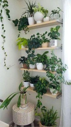 Easy House Plants, House Plants Decor, Bedroom Plants Decor, Plant Wall Decor, Fake Plants Decor, Decor Room, Plantas Indoor, Decoration Plante, Artificial Plants