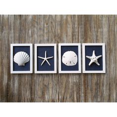 Beach Cottage Chic Set of Beach Wall Art, Navy, Nautical, Beach House... ($70) ❤ liked on Polyvore featuring home, home decor and wall art