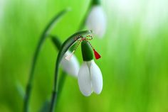 1 martie gif - Buscar con Google Happy Spring, Hello Spring, 8 Martie, Spring Coloring Pages, Visit Romania, Holiday Traditions, Baba Marta, Life Hacks, Bullet Journal
