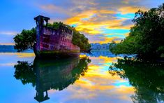 #FloatingForest