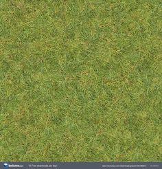 Textures.com - Grass0130