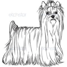 Yorkie coloring pages and free printable coloring pages for Yorkie coloring pages