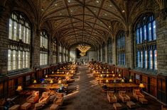 The Reading Room of the Harper Library at the University of Chicago . and 12 other Chicago design destinations Library Week, College Library, College Fun, School Libraries, College Board, Dream Library, College Campus, College Life, Chicago University