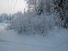 A frosty day.
