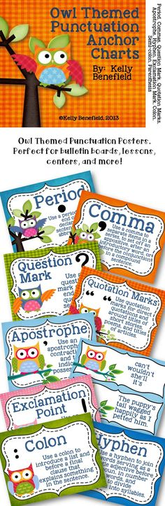 Owl Themed Punctuation Posters. Great for bulletin boards, lessons, centers, and more! $