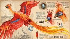 """Here's a peek into the new illustrated edition of """"Harry Potter and The Chamber of Secrets"""""""