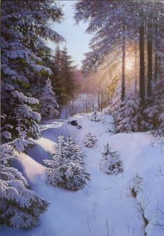 Best photos: Winter and snow Winter Pictures, Nature Pictures, Beautiful Pictures, Winter Photography, Landscape Photography, Nature Photography, Winter Magic, Winter Scenery, Snow Scenes