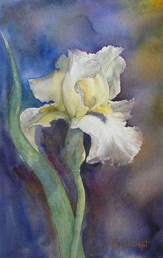 Fleurs | Joe Cartwright aquarelliste