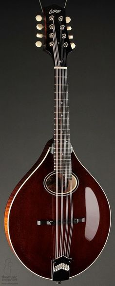 Collings MT-O in Sheraton Brown Gloss (Mandolin Cafe)