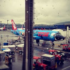 Rio by TAM Airlines