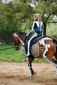 Gillian Higgins is a champion horseback rider who teaches horse anatomy to veterinary students, riders, and caretakers by painting the skeletal and muscular systems on the bodies of live horses. She uses water-based hypoallergenic paints and spends up to 4 hours painting a single horse.